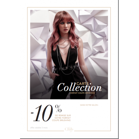 CARTES COLLECTION COUPE BRUSH -10%
